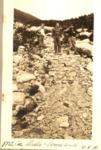 Mt. Coe Slide, Lower End (W.R.M.). by David Field