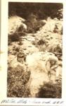 Mt. Coe Slide, Lower End (W.R.W.) by David Field