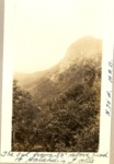 The Owl from 50 Ft. Above Head of Katahdin Falls, N 70 Degrees W (H.R.G.) by David Field