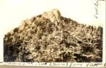 Barren 2Nd Peak (Cairn) from East. 1928 by David Field