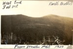 From Mullen Mt. Towards North Brother, 1929 by David Field