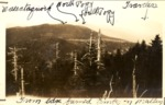 From Edge of Burned Timber on Mullen, Looking Towards Wassataquoik and the Pogys by David Field