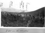 View in the Klondike Towards the Owl by David Field
