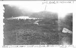Lake Cowles from Rock on Roche Moutonnee near Davis Pond, 1928 by David Field