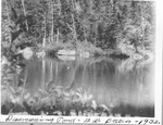 Disappearing Pond, Northwest Basin, 1932 by David Field