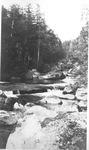 "The Wassataquoik in The Klondike, near The ""Trees"" by David Field"