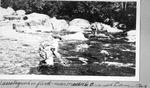 Wassataquoik in Flood, near Middle Branch Dam, August by David Field