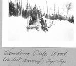 Loading Pulpwood (12 Feet Snow), Tip-Top by David Field