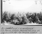 On Middle Branch of Wassataquoik, the Ravine Between Russell Mt. and the Spur on Which Tip-Top Camp Is Located by David Field