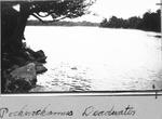 Pockwockamus Deadwater by David Field