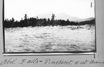 Abol Falls, Penobscot West Branch by David Field