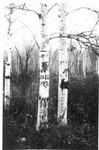 Popple Burying Ground by David Field