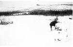 East Branch to Lunksoos, Feb., 1914 by David Field