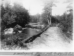 Wassataquoik Stream With Bridge (on Middle Branch Above South Branch Dam) (L. Rogers) by David Field