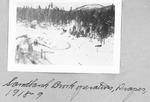 Sandbank Brook Operations, Draper, 1918-1919 by David Field