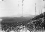 Katahdin Viewed from Hathorn Notch on Hathorn Mt. (L. Rogers). Marking Limit of 1884 Fire. by David Field and L. Rogers