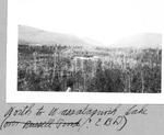Looking North to Wassataquoik Lake (E.B.D.) by David Field