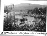 Wassataquoik Mt. from Six Ponds Dam, 1929 by David Field
