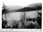 Looking into Klondike from Dam on Six Ponds by David Field
