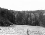 Mullen Brook Pond by David Field