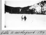 Little Wassataquoik, 1914 by David Field