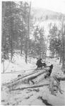 Snubbed Load of Horse-Drawn Logs near Wassataquoik Lake by David Field
