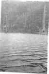 Looking Across Lake to Pogy Sluice by David Field