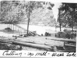 Cutting Up Mill, Wassataquoik Lake. [Cutting Peeled Spruce Logs to Pulpwood Length.] by David Field
