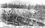 Mahar Pond from West Side, 1939 (Mahar) by David Field and J. C. Mahar
