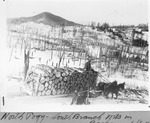 North Pogy—South Branch Mts. in Background (E.B.D.) by David Field