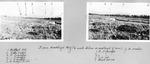 Looking Toward Traveler from Wadleigh Bog (1/2 Mile Below Wadleigh Dam) (J.E. Mahar) by David Field