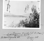 Turner Pond, 1924. Looking Up Turner Brook Toward Wassataquoik Mt. (L. Rogers) by David Field