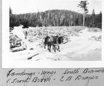 Landings, Upper South Branch of Trout Brook, E.B. Draper by David Field