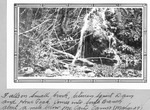 Falls on Small Brook, Between Squirt Dam and Howe Peak. Comes Into South Branch About A Mile Below Mccarty Camp, 1929 (Mahar) by David Field