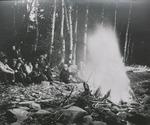 Men and Women sit Near a Bonfire
