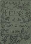 Ferns of the Camp Wigwam Region by Farida A. Wiley
