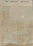Bridgton Sentinel : Vol. 1, No. 13 - March 5, 1864 by Bridgton Sentinel Newspaper