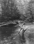 Man Fly Fishing in Maine Stream by Maine Development Commission