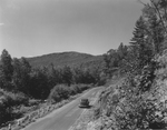 Car Traveling Along Narrow Road Near Maine Mountains