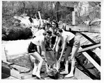 Alewife Festival Damariscotta 1957 013 by Maine Department of Sea and Shore Fisheries