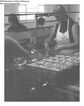 Women Working At a Seafood Cannery by Maine Department of Marine Resources