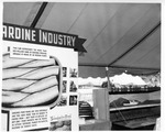 Rockland Seafood Festival, 1958 - Sardine Industry by Maine Department of Sea and Shore Fisheries
