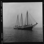 Rockland Seafood Festival, 1958 - Tall Ship by Maine Department of Sea and Shore Fisheries