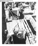 Unloading Groundfish from Trawler by Maine Department of Marine Resources