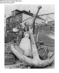 Rockland Seafood Festival 1956 by Maine Department of Sea and Shore Fisheries