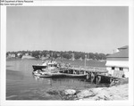 "Guardian"" and Other Boats Tied to Dock at Mckown Point, Boothbay Harbor, Maine by Department of Marine Resources"