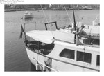 "Ornlay"" Yacht, Boothbay Harbor Marijuana Raid by Department of Marine Resources"