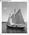 Sailing Vessel, Rockland, Maine by Department of Marine Resources
