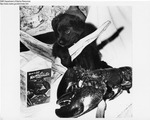 Puppy and Lobster by Maine Department of Sea and Shore Fisheries