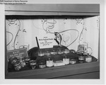 Liquor Store Display Biddeford, Maine, November 1966 by Maine Department of Sea and Shore Fisheries